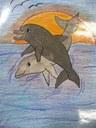 """Premiazione del concorso di idee """"L'uomo e il delfino"""" -"""